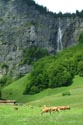 Image Ref: 1302-21-76 - Lauterbrunnen Valley, Viewed 4367 times