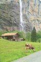 Staubbach Waterfall, Lauterbrunnen, Berner Oberland has been viewed 5048 times