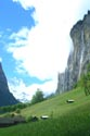 Image Ref: 1302-23-88 - Lauterbrunnen Valley, Viewed 4525 times