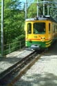 Wengernalp Railway  / Wengernalpbahn has been viewed 4838 times