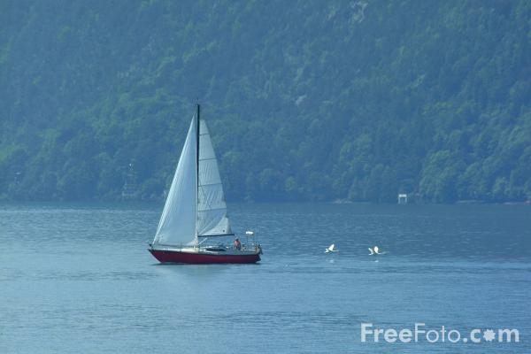 Picture of Sailing, Lake Lucerne, Switzerland / Vierwaldstättersee, Die Schweiz - Free Pictures - FreeFoto.com