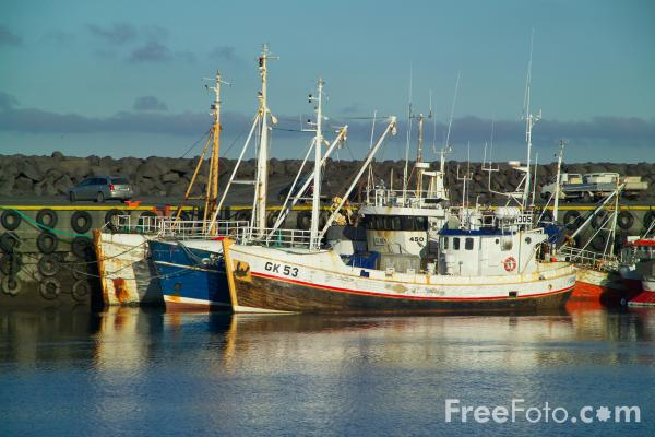 Picture of Fishing Fleet, Sandgerdi, Iceland - Free Pictures - FreeFoto.com