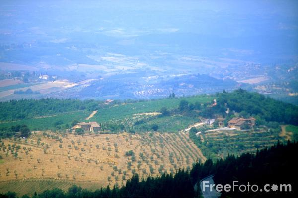 Picture of Chianti Classico Wine Region, Tuscany, Italy - Free Pictures - FreeFoto.com