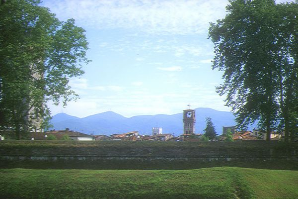 Picture of The City Wall, Lucca, Tuscany, Italy - Free Pictures - FreeFoto.com