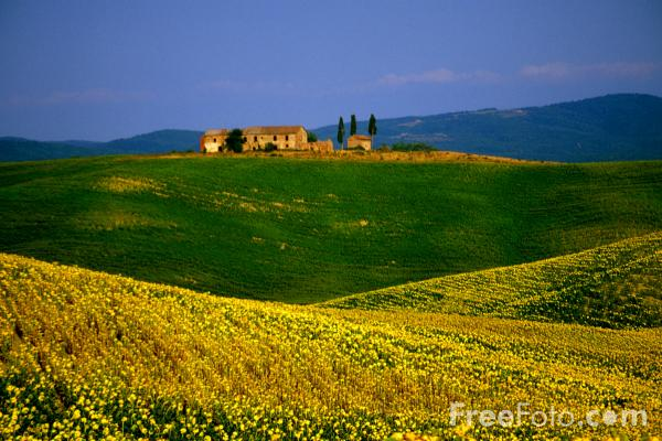 Picture of Hill Top Farm, Tuscany, Italy - Free Pictures - FreeFoto.com