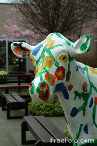 Picture of Painted Cow, Keukenhof, Holland - The Netherlands - Free Pictures - FreeFoto.com