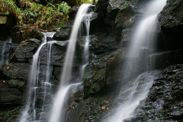 Picture of Wharnley Burn Waterfall, County Durham - Free Pictures - FreeFoto.com