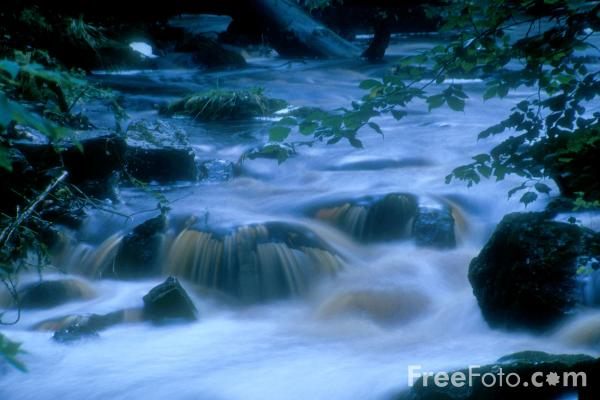 Picture of Hareshaw Linn - Free Pictures - FreeFoto.com