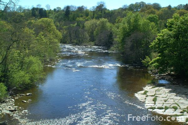 Picture of River Swale, Near Richmond, North Yorkshire - Free Pictures - FreeFoto.com