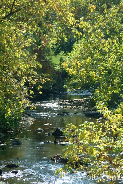 Picture of River, Woodstock, Vermont - Free Pictures - FreeFoto.com