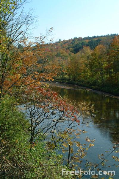 Picture of Ottauquecheee River, Bridgewater Corners, Vermont - Free Pictures - FreeFoto.com