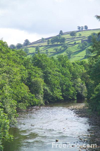 Picture of River Swale, Swaledale - Free Pictures - FreeFoto.com