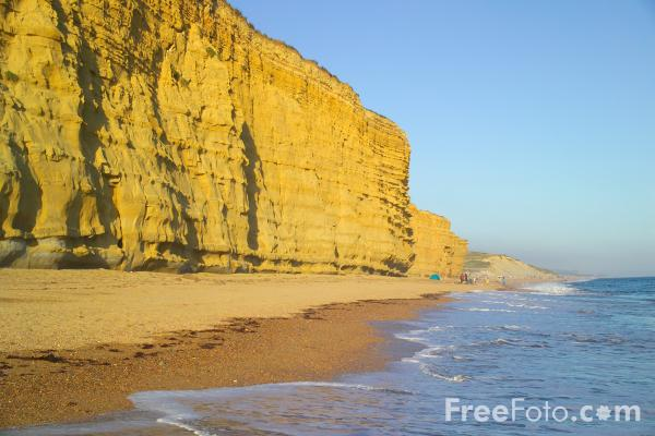 Picture of Cliff Face, Burton Cliff, Dorset - Free Pictures - FreeFoto.com