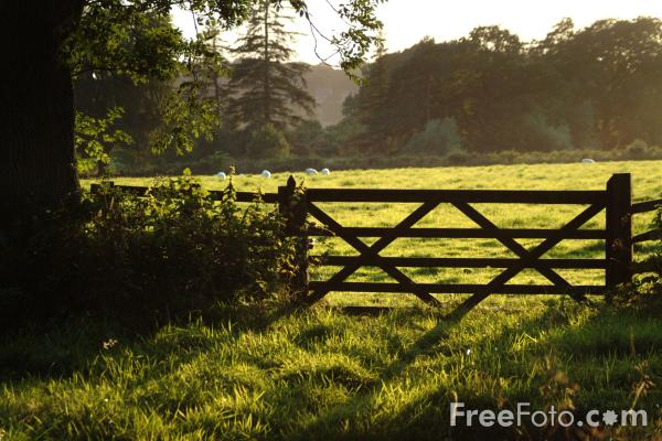 Picture of Farm Gate - Rural Scene, Northumberland - Free Pictures - FreeFoto.com