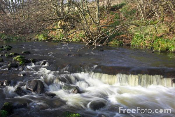 Picture of River Derwent - Free Pictures - FreeFoto.com