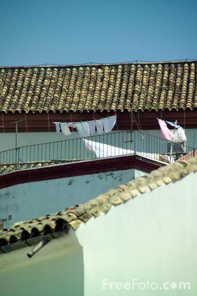 Picture of Roof Tops, Montoro - Free Pictures - FreeFoto.com