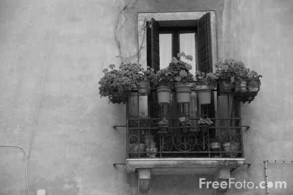 Picture of Window, Venice, Italy - Free Pictures - FreeFoto.com
