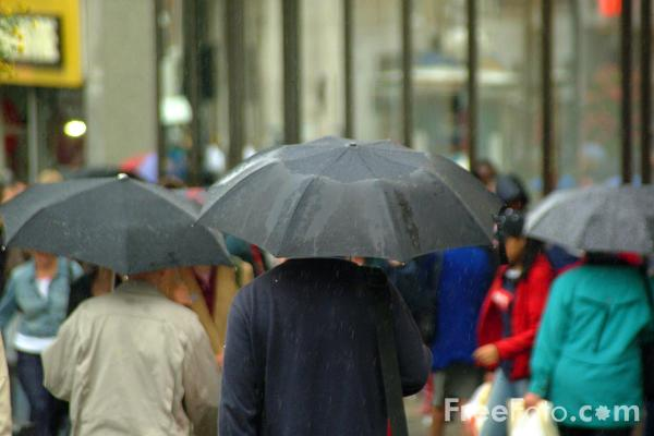 Picture of Shopping in the rain - Free Pictures - FreeFoto.com