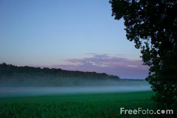 Picture of Evening Mist - Free Pictures - FreeFoto.com