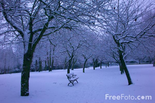 essay on winter season There are six seasons in-a year winter is one of them it is felt in india from the month of november till the end of february it covers the two months named pausha and magha as per the oriya calendar.