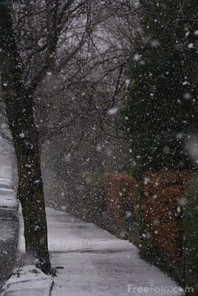 Picture of Winters Day - Free Pictures - FreeFoto.com