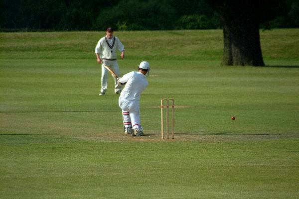 Picture of Village Cricket - Free Pictures - FreeFoto.com