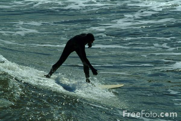 Picture of Surfing - Free Pictures - FreeFoto.com