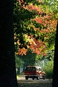 Image Ref: 19-01-60 - Autumn color in New England, Viewed 5786 times