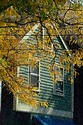 Image Ref: 19-01-73 - Autumn color in New England, Viewed 5869 times