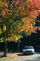 Image Ref: 19-04-58 - Autumn color in New England, Viewed 5680 times