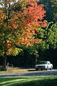 Image Ref: 19-04-61 - Autumn color in New England, Viewed 5759 times