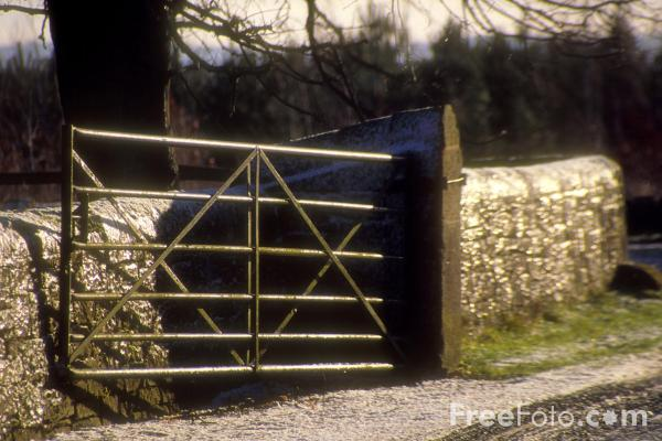 Picture of Snow Covered Farm Gate - Free Pictures - FreeFoto.com