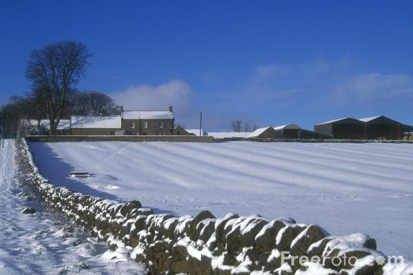 Picture of Winter Scene, Northumberland - Free Pictures - FreeFoto.com