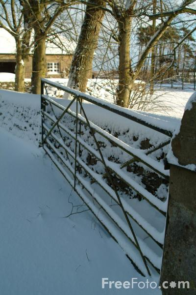Picture of Farm Gate, Winter, Northumberland - Free Pictures - FreeFoto.com