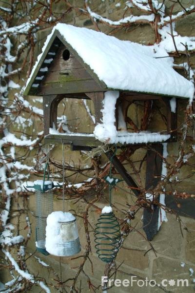 Picture of Bird Table in the snow - Free Pictures - FreeFoto.com