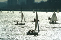 Sailing, Charles River, Boston, USA has been viewed 6430 times