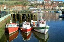 Image Ref: 2026-06-9 - Fishing Boats, Whitby Harbour, North Yorkshire, Viewed 12307 times