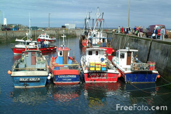 Picture of Fishing Boats, Seahouses, Northumberland - Free Pictures - FreeFoto.com