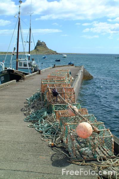 Picture of Fishing Boats, Holy Island, Northumberland - Free Pictures - FreeFoto.com