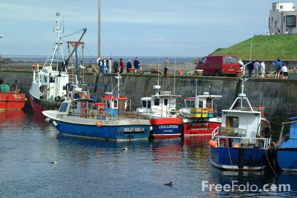 Fishing boat whitby harbour north yorkshire pictures for Richard bowling fishing report