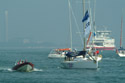 Cowes Week 2002 has been viewed 5892 times