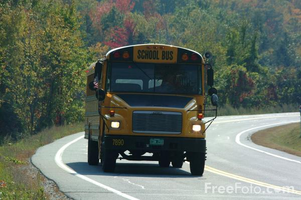 Picture of School Bus - Free Pictures - FreeFoto.com