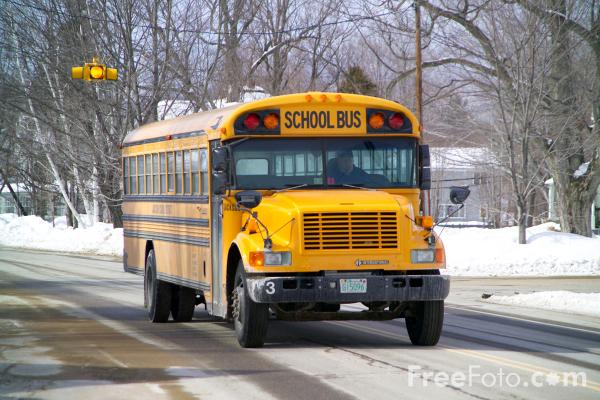 Picture of American Icon - The Yellow School Bus - Free Pictures - FreeFoto.com