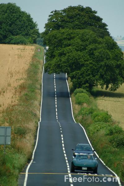 Picture of Country Road, B3081, Dorset, - Free Pictures - FreeFoto.com