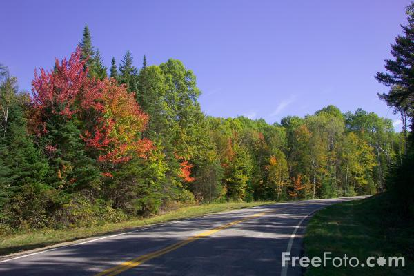 Picture of American Road - Free Pictures - FreeFoto.com