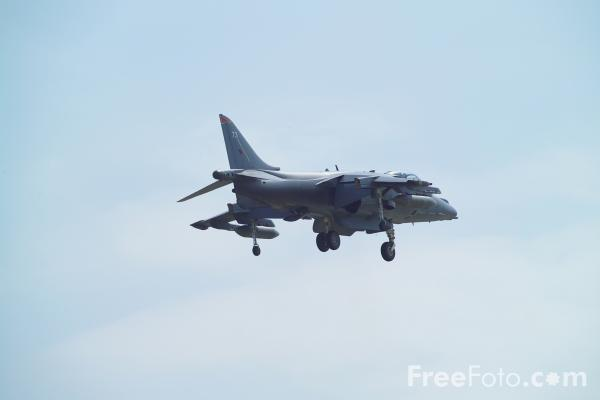 Picture of Harrier GR7 - Free Pictures - FreeFoto.com