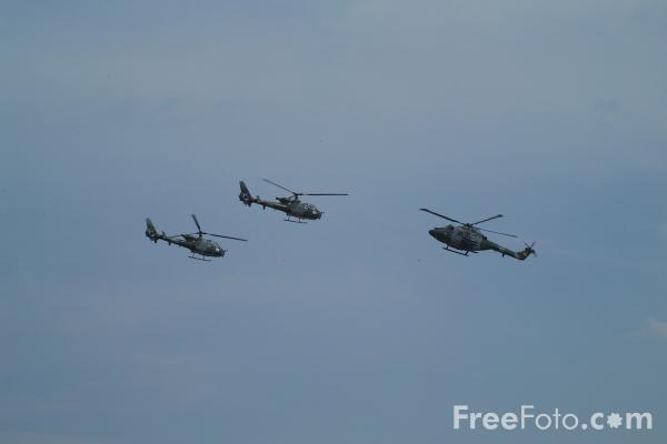 Picture of The Blue Eagles Army Air Corps Aerobatic Display Team - Free Pictures - FreeFoto.com