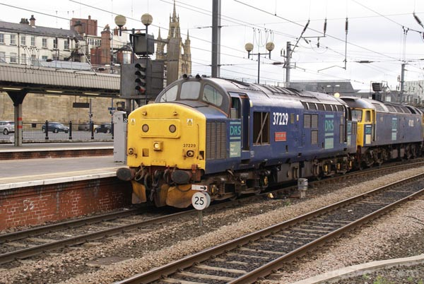 Picture of Direct Rail Services DRS Class 37 37229 - Free Pictures - FreeFoto.com