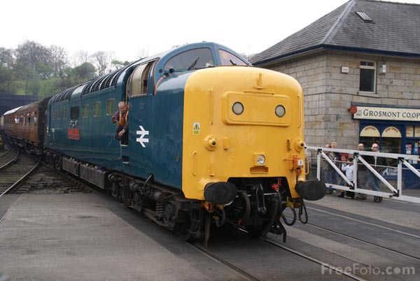 Picture of Class 55 Deltic D9019 55019 Royal Highland Fusilier - Free Pictures - FreeFoto.com
