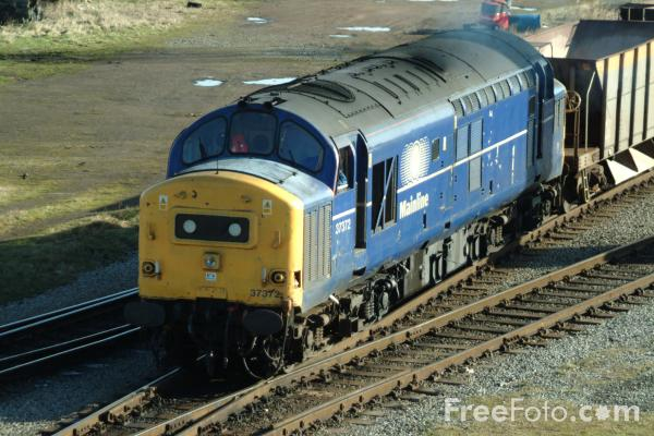 Picture of Class 37 37372 at Thornaby Yard - Free Pictures - FreeFoto.com